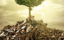servizio smaltimento dei rifiuti speciali